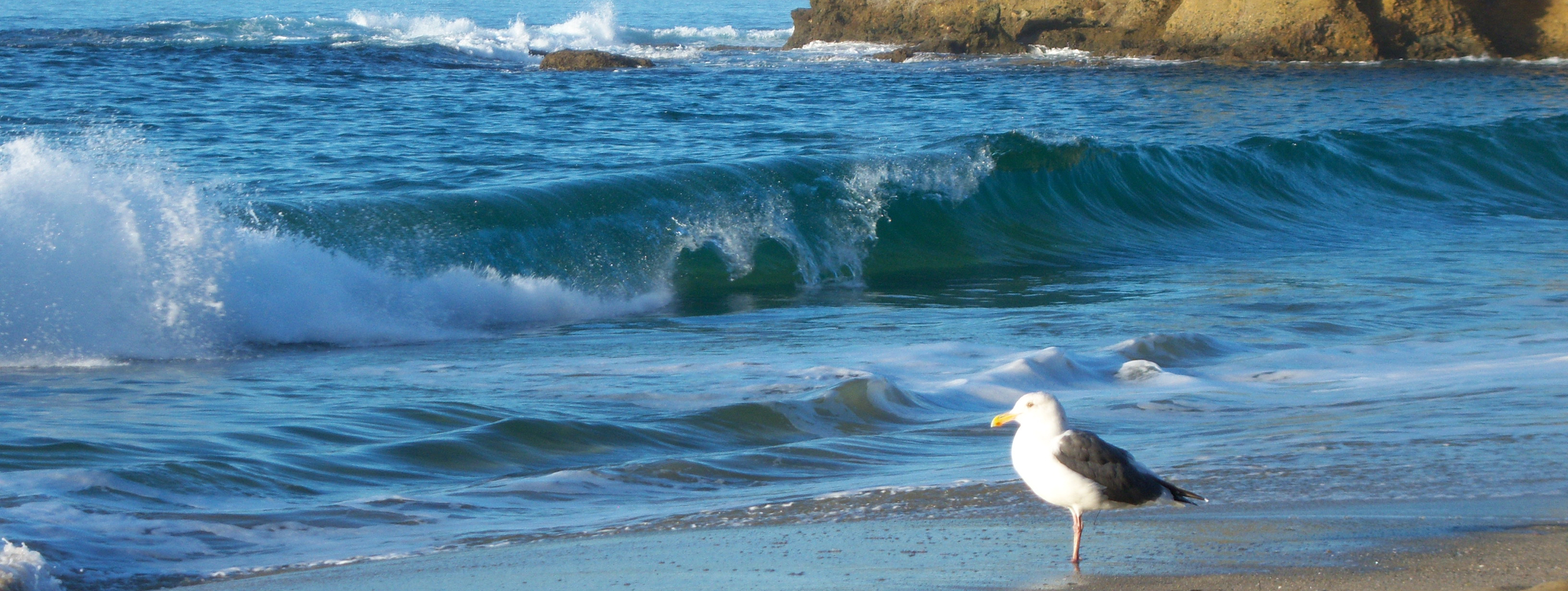 Beach_0950-W