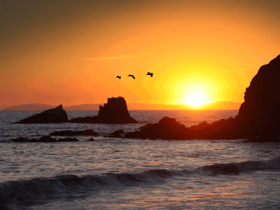 <h3>Flight of the Sunset Pelicans,<br/>Laguna Beach, California</h3><br/><p>This I believe is one of my best sunset photos. It encapsulates the movement of life with the Pelicans and the surf with Mother Nature's pomp and circumstance evident at her glorious sundown.</p>