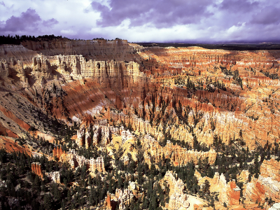 Bryce Canyon, Utah-by Martin Sullivan