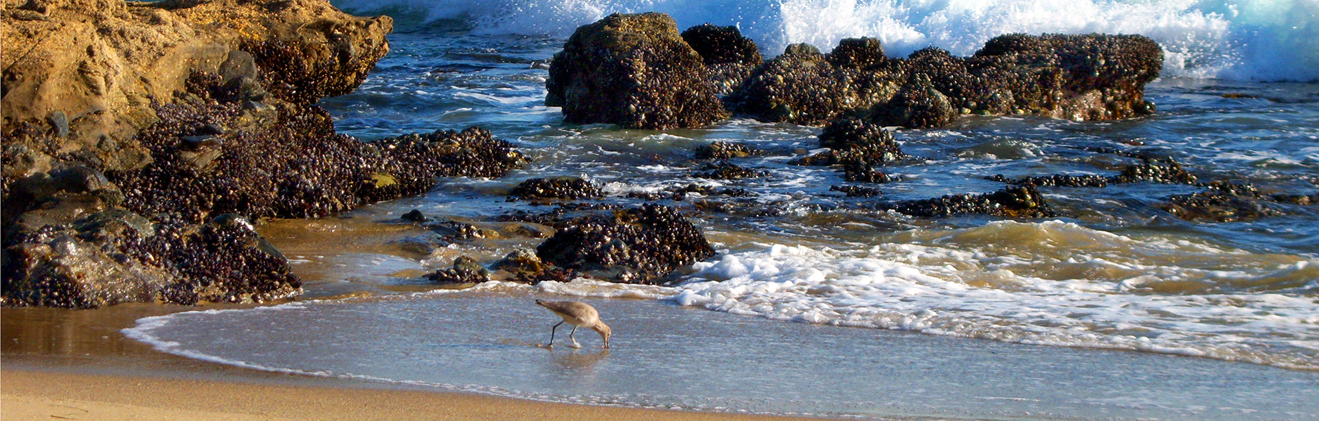 1x3W-Beach-880