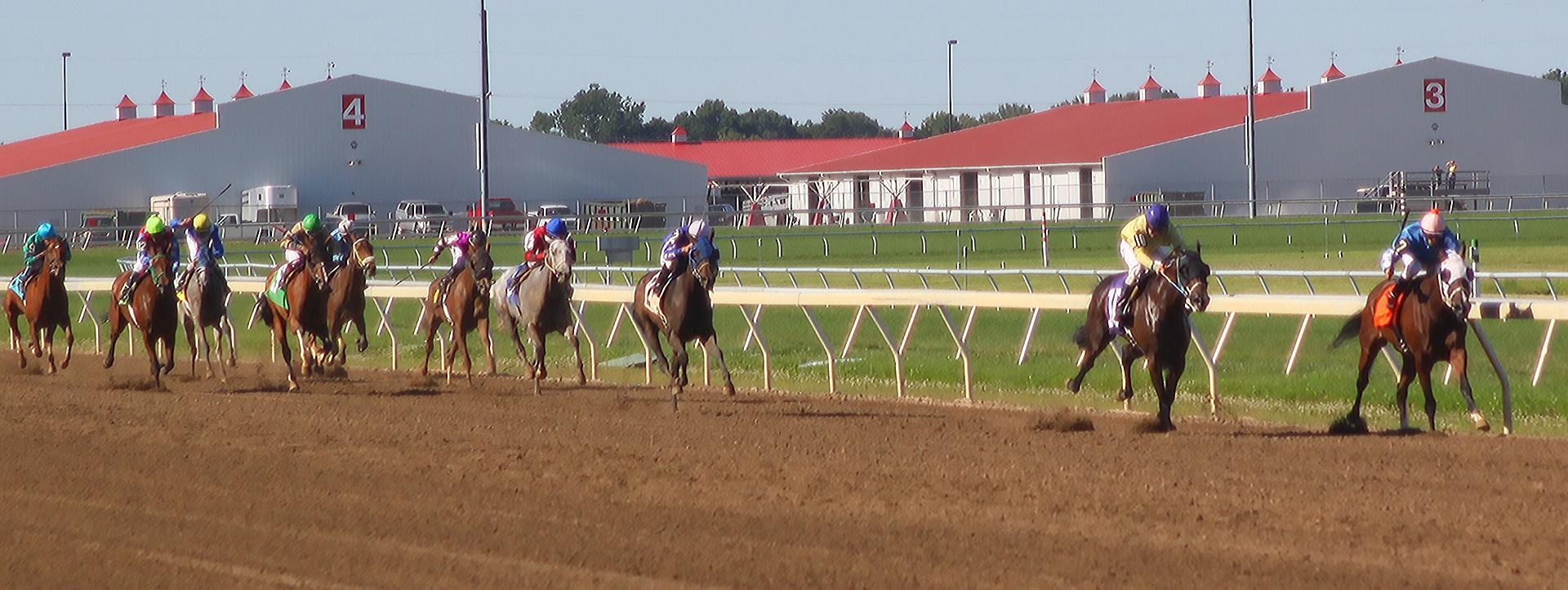 Horse-racing_1x3-0055-W