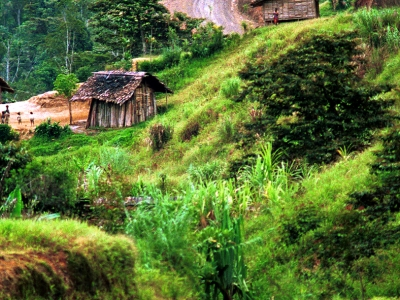 Papua New Guinea Highlands Highway by Martin Sullivan