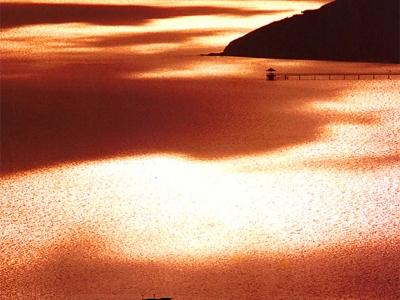Papua New Guinea Port Moresby Gold by Martin Sullivan