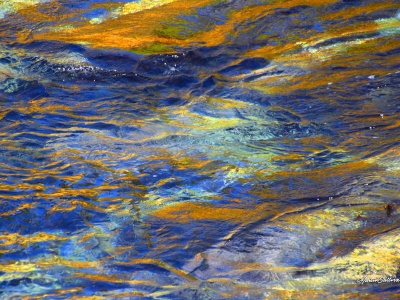 The Water Color Series by Martin Sullivan - 0585